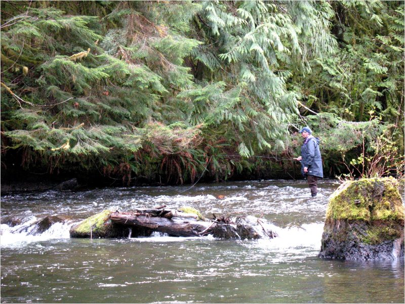 Featured Articles Comox Valley Flyfishers Club Flyfishing On