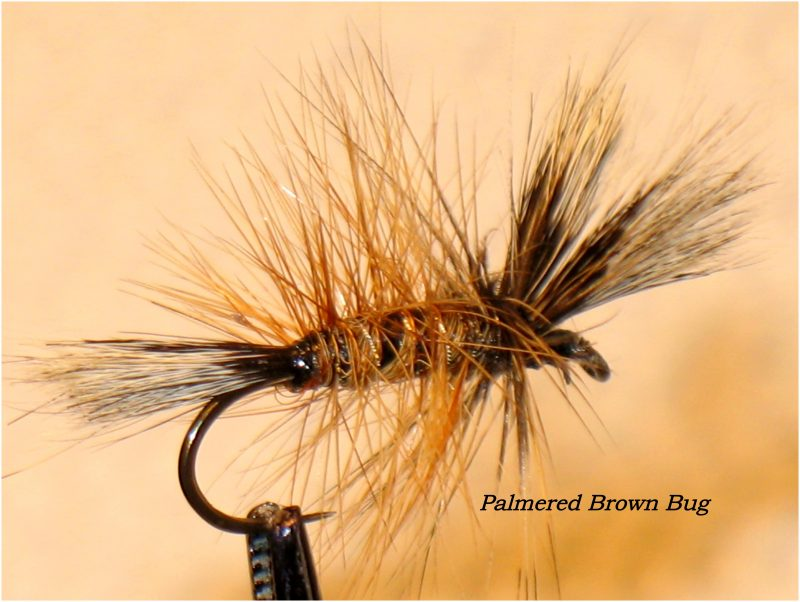 Tying the Palmered Brown Bug