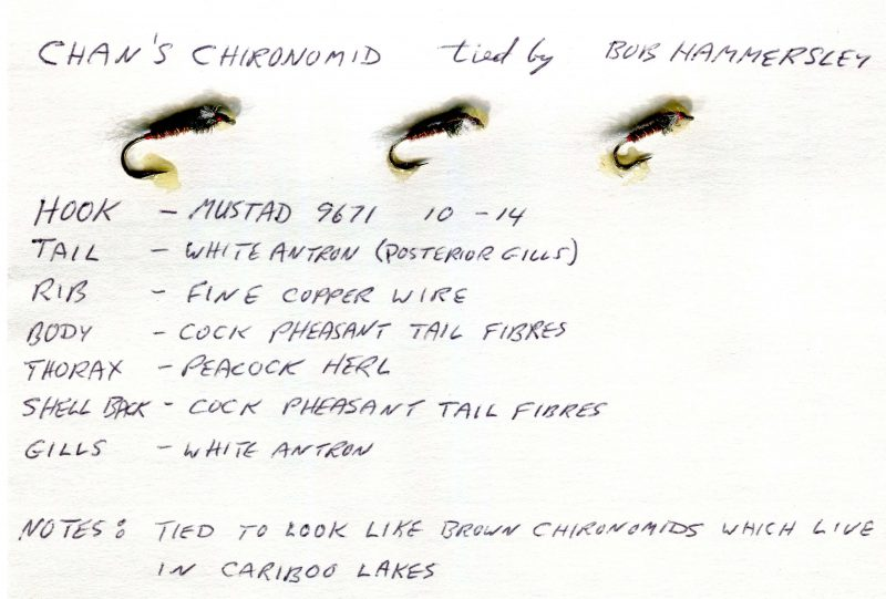 Chan's Chironomid
