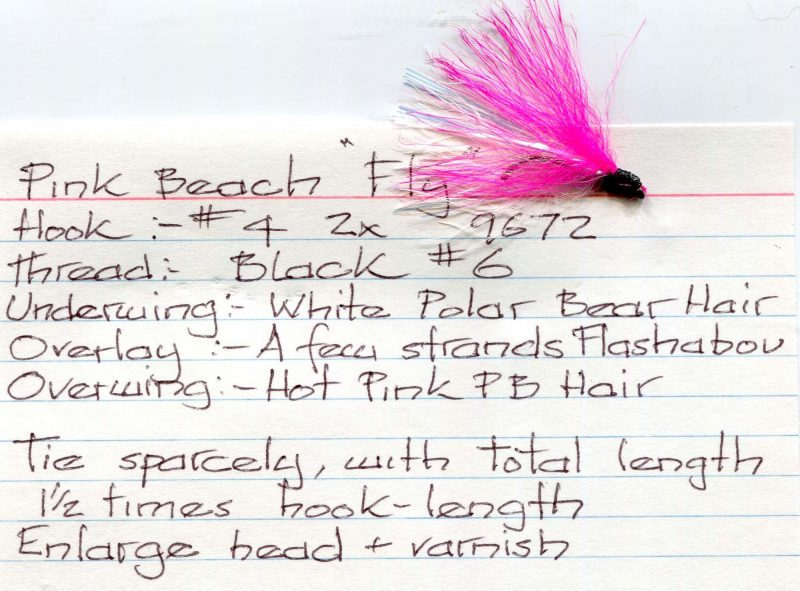 Pink Beach Fly