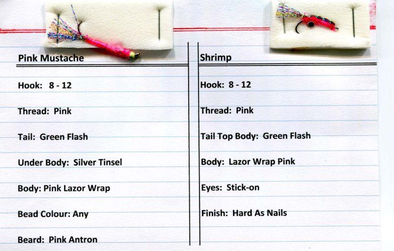 Pink Mustache & Shrimp