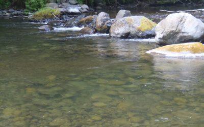 BIG QUALICUM FISHING – 12 JULY 2019