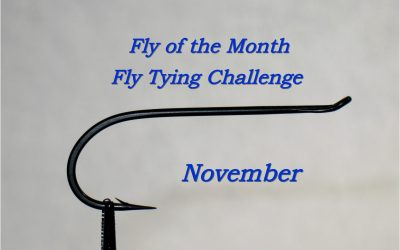 Fly of the Month for November