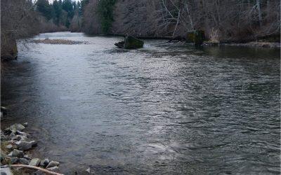 Puntledge River 07 02 2021